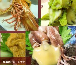 バンディ石田 ライブ特別コース