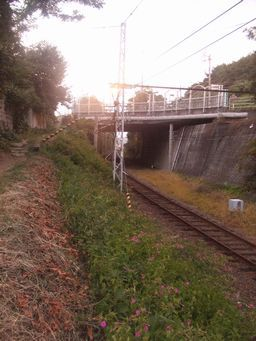 伊予鉄 高浜線